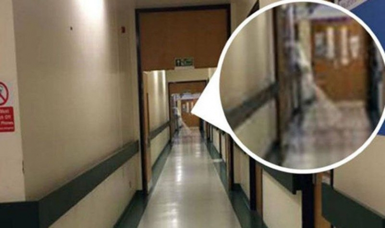 Haunted Classrooms and Ghostly Students